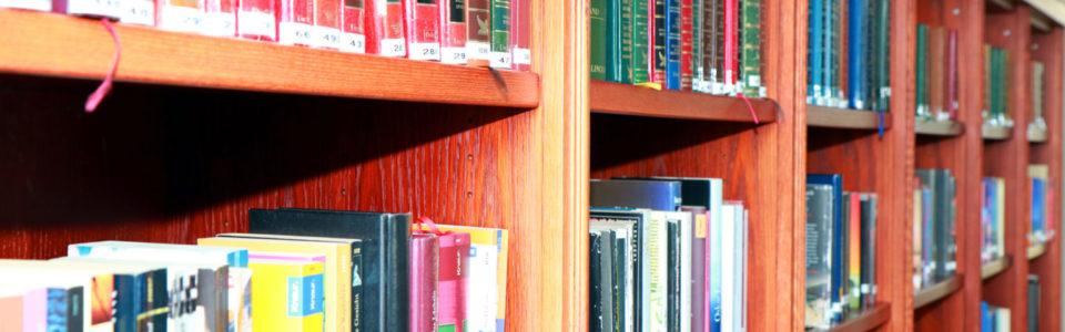 Publikationen / wissenschaftliche Veröffentlichungen